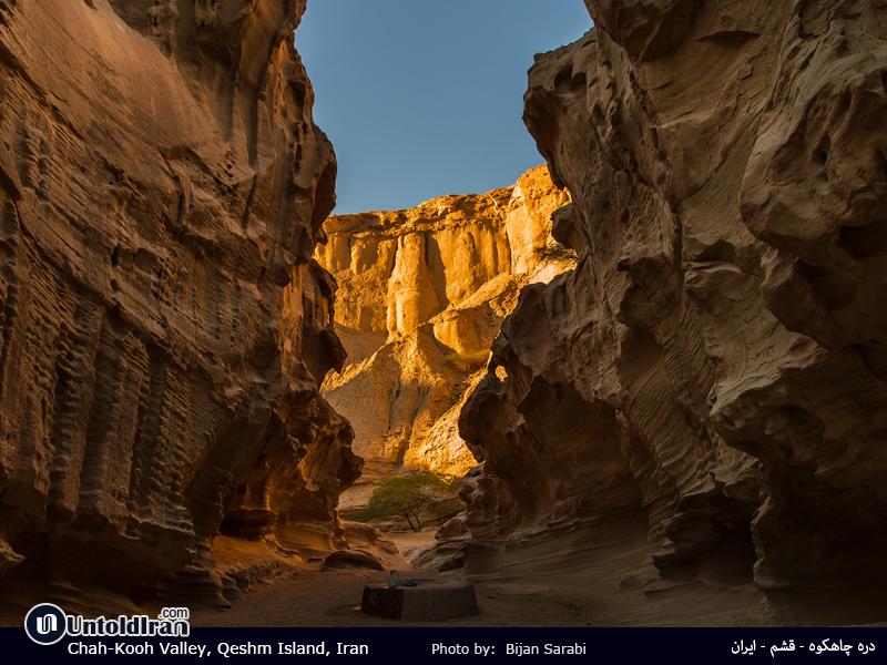 Shiraz & Gheshm Island Tour